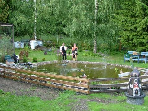 Trädgård trädgård damm : TrädgÃ¥rdsdamm